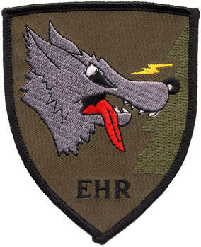 Patch APS de l'EHR type 3 du 3e RHC